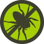 Wipe out spiders and fleas in your yard with Mosquito Squads barrier spray